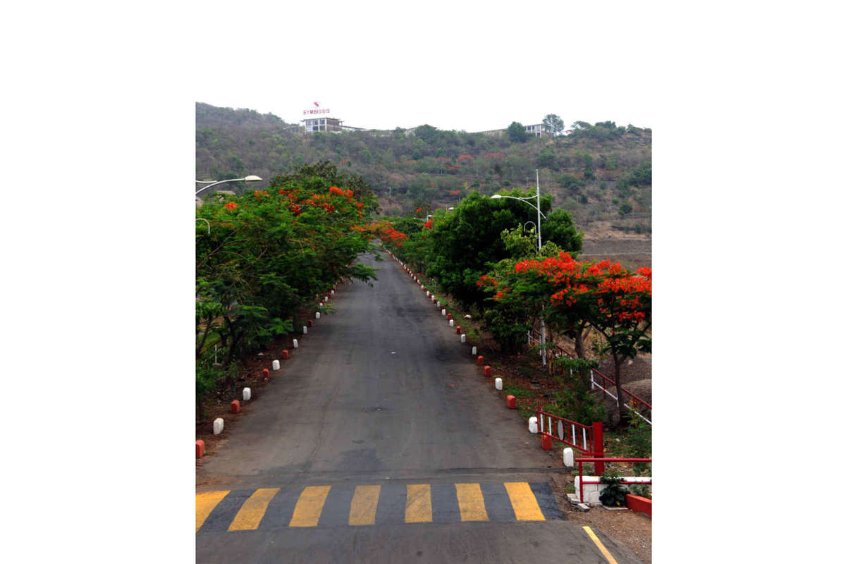 Ghat Road with May Flower